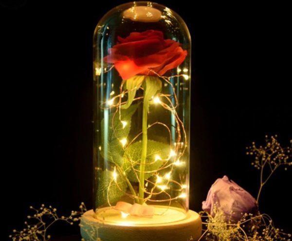 Belle en het Beest Enchanted Rose, Roos, Stulp, Sprookje, Huwelijk, Valentijn, Cadeau, Romantiek, LED, Liefde