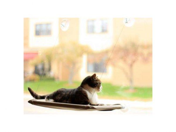 Kattenbed Voor Aan Het Raam