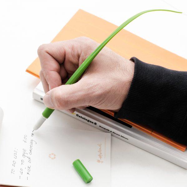 Kikkerland Gras pen