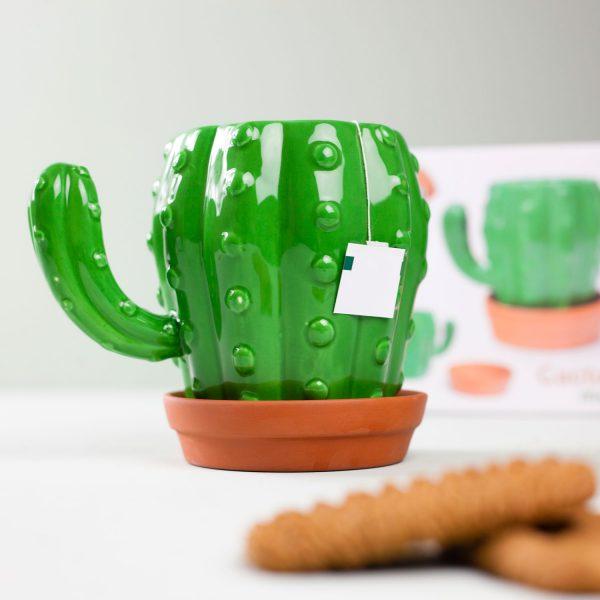 Cactus Mok - Balvi