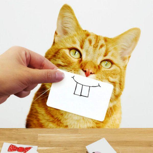 Cat Snaps - Suck UK