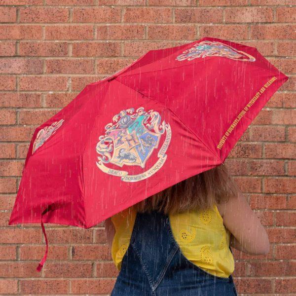 Harry Potter Hogwarts Paraplu